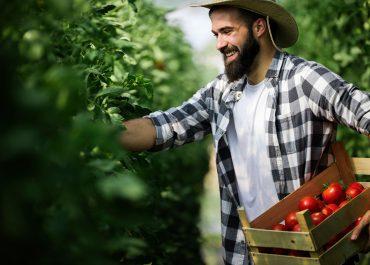 7 Emprendimientos exitosos en el sector de la Agrotecnología