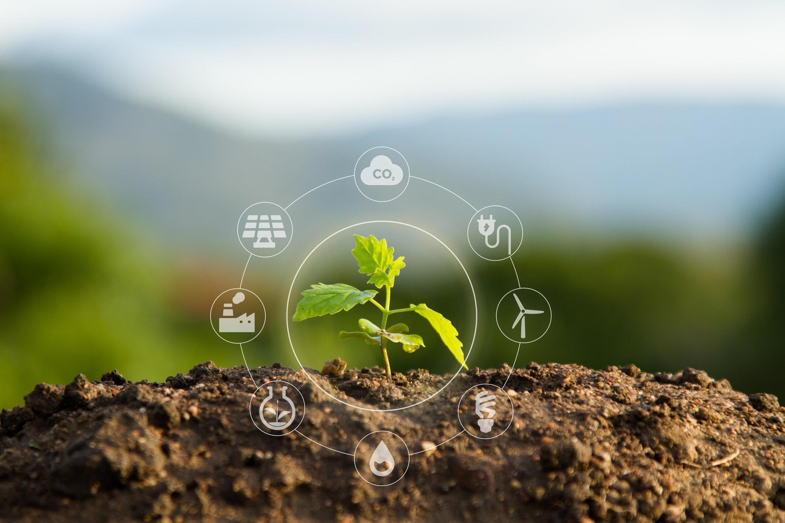 agricultura sostenible en empresas de españa
