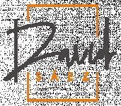 Logo Uav Blackbird Sociedad Limitada.