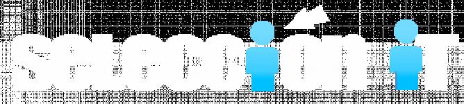 Logo Seleccion IT