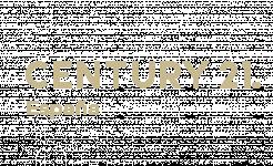 opiniones Century 21 Teogar