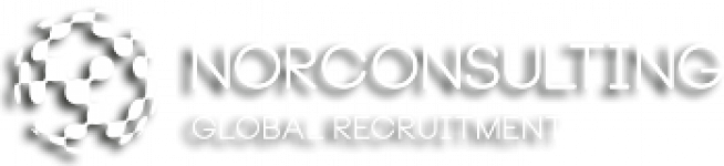 Logo Norconsulting Global Recruitment