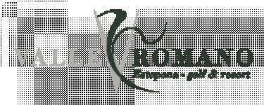 Logo Compañia Promotora Y De Comercio Del Estrecho