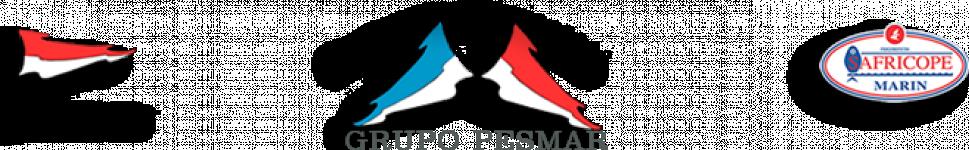 Logo Comercial De Productos Congelados Pesmarin