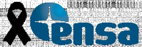 Logo Exclusivas novar