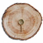 Logo Estils i formes