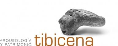 opiniones Tibicena Arqueologia Y Patrimonio Sociedad Limitada